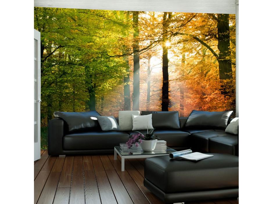 Papier peint  Bel automne