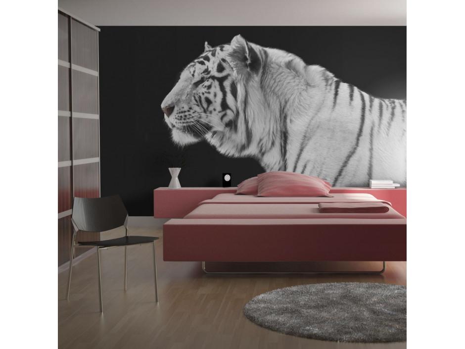 Papier peint  Tigre blanc