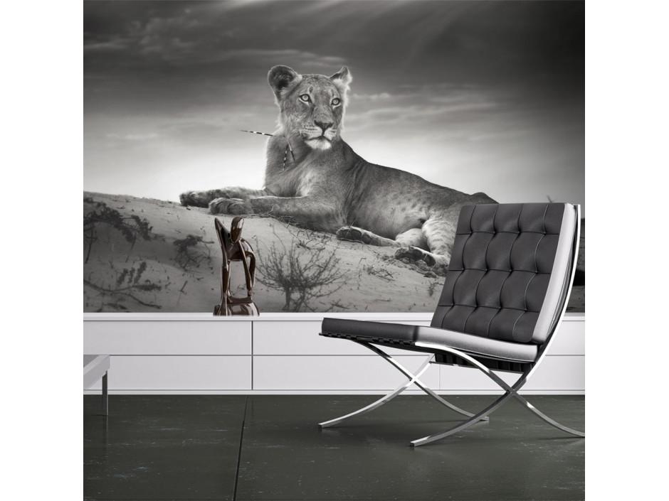Papier peint  Une lionne en noir et blanc