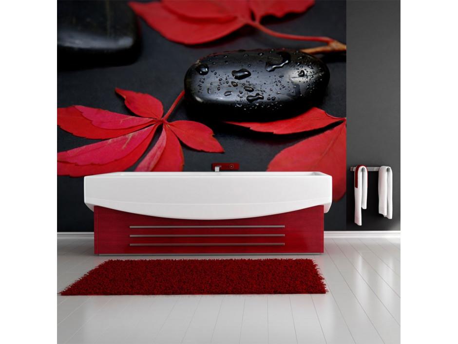 Papier peint  Intensité du rouge  zen