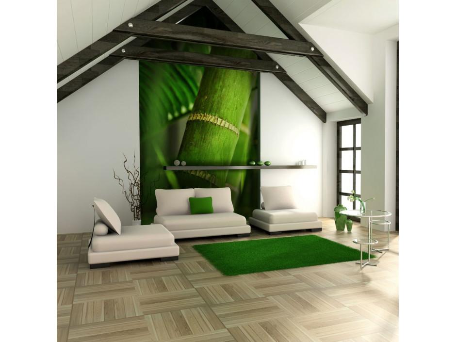 Papier peint  bambou  détail