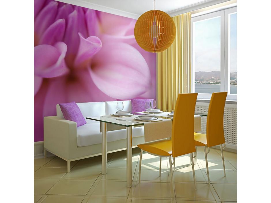 Papier peint - Pétales de fleur - dahlia