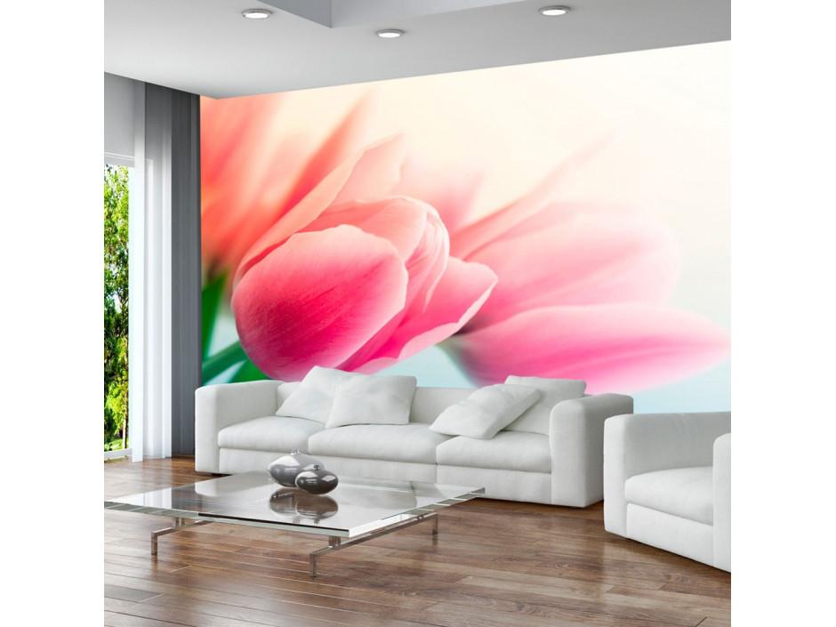 Papier peint  Printemps et tulipes