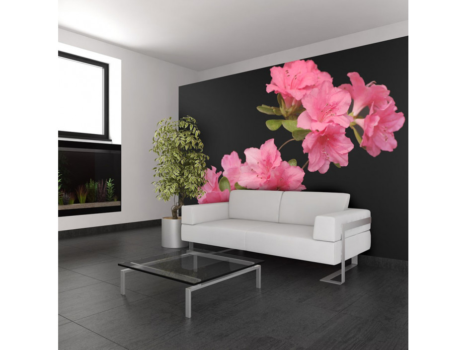 Papier peint - Azalea in Black