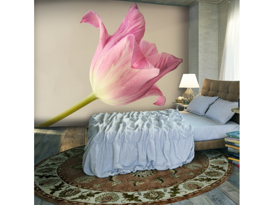 Papier peint  Pink tulip