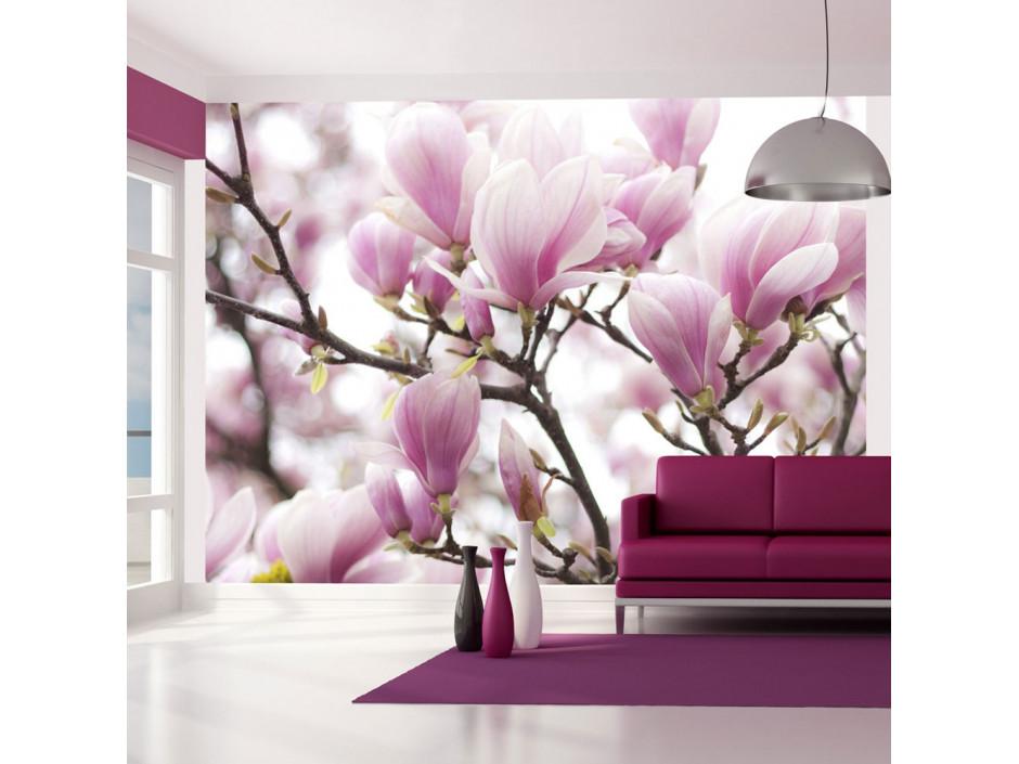Papier peint - Branche de magnolia en fleurs