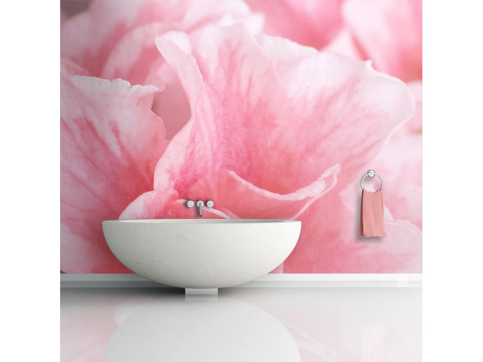 Papier peint - Fleurs roses de l'azalée