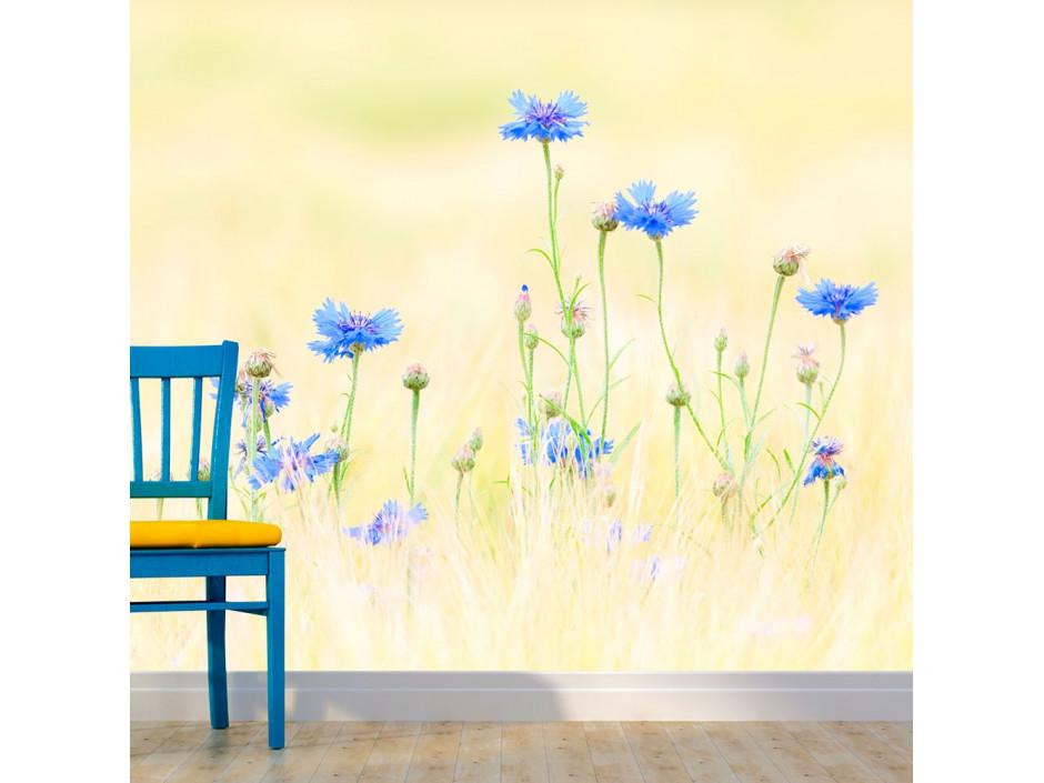 Papier peint  Bleuets