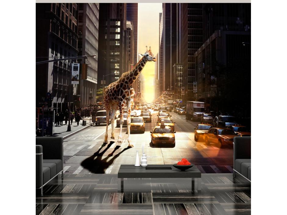 Papier peint - Girafe à New York