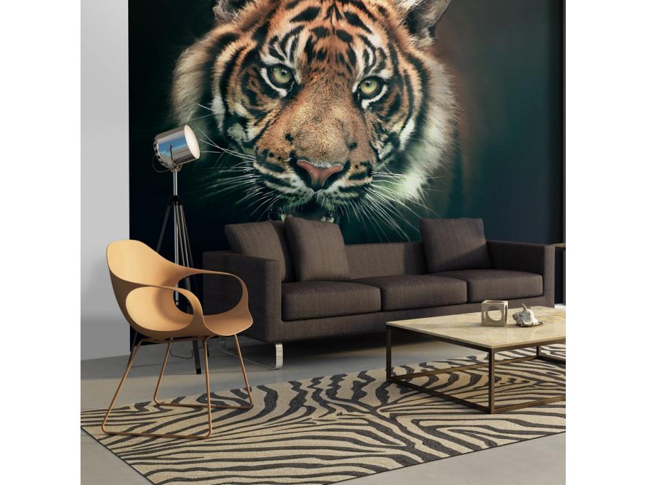 Papier peint  Tigre du Bengale
