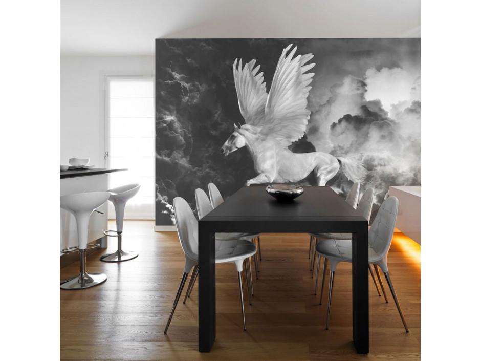 Papier peint  Pegasus sur le chemin de lOlympe