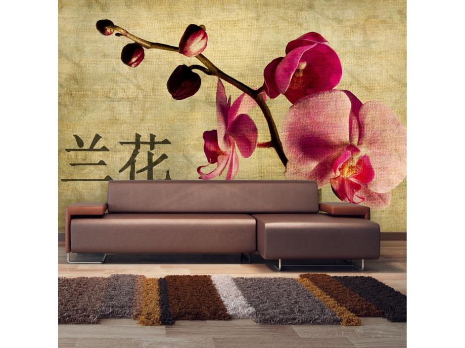 Papier peint  Japanese orchid