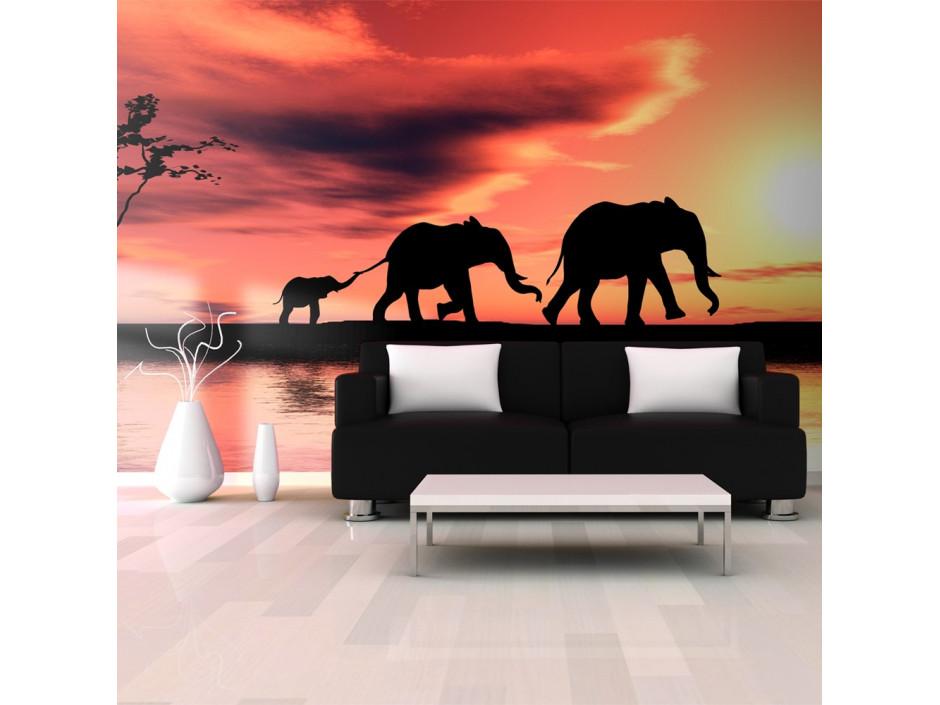 Papier peint XXL  éléphants famille