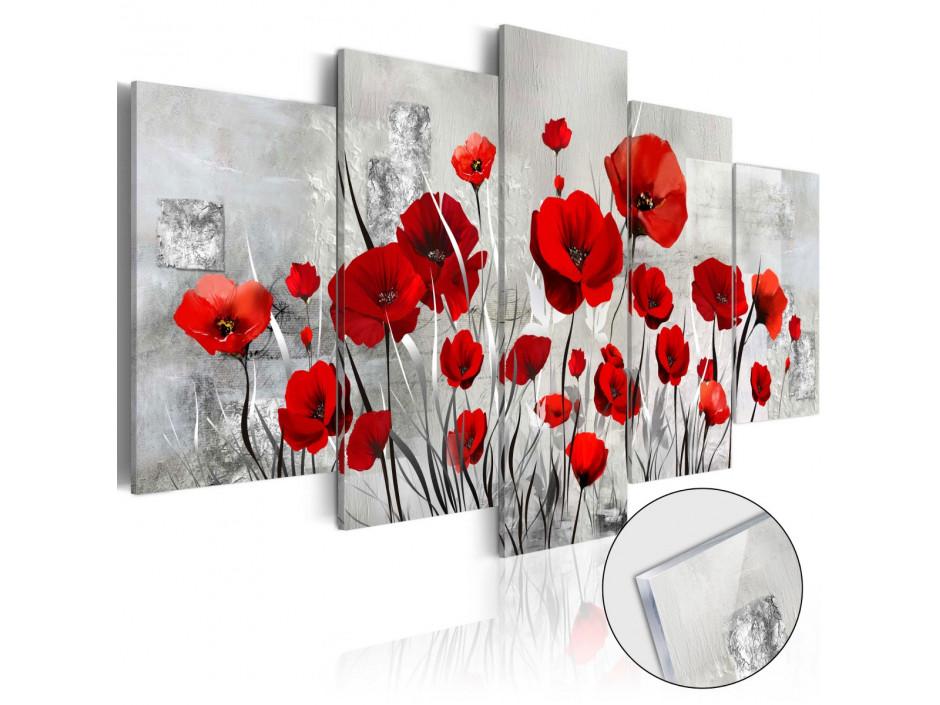 Tableau sur verre acrylique  Scarlet Cloud [Glass]