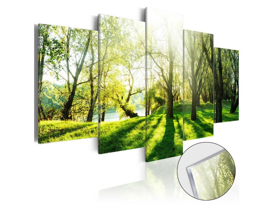 Tableau sur verre acrylique  Green Glade [Glass]