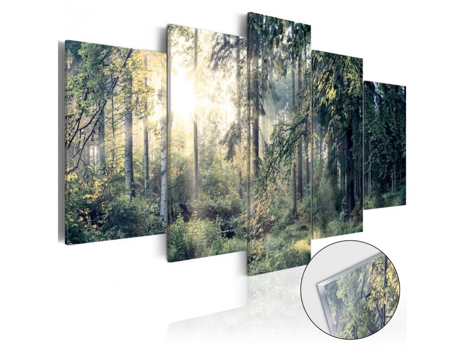 Tableau sur verre acrylique  Fairytale Landscape [Glass]