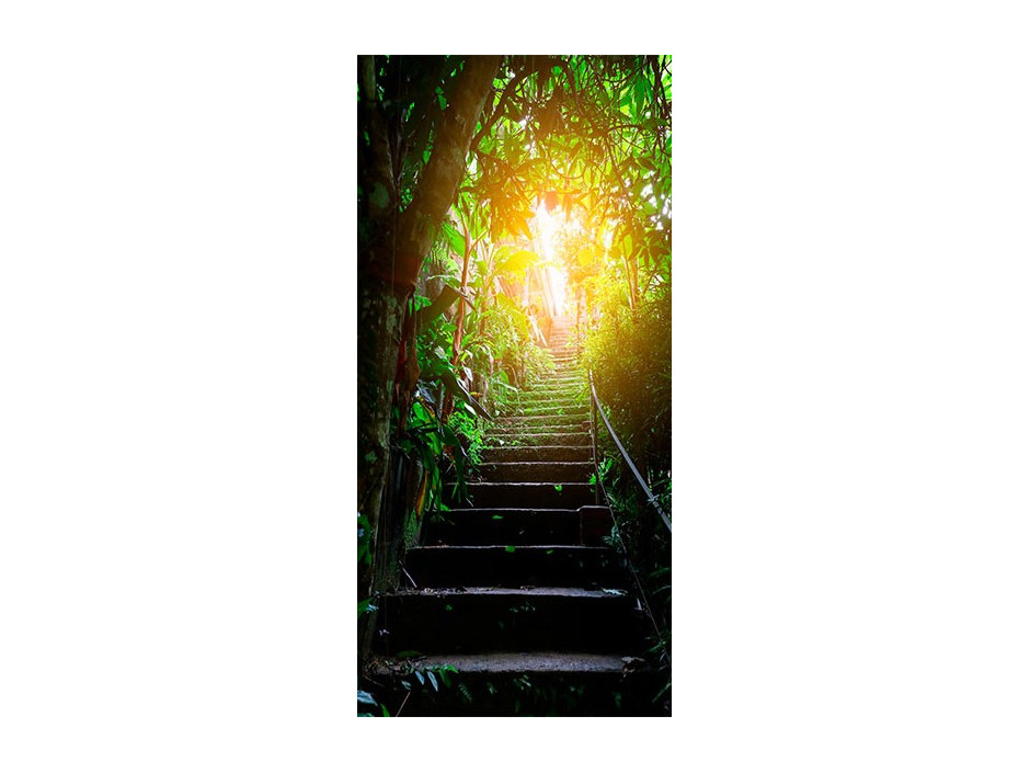 Papierpeint pour porte  Photo wallpaper  Stairs in the urban jungle I