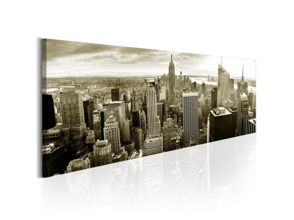 Tableau - Manhattan: Financial Paradise