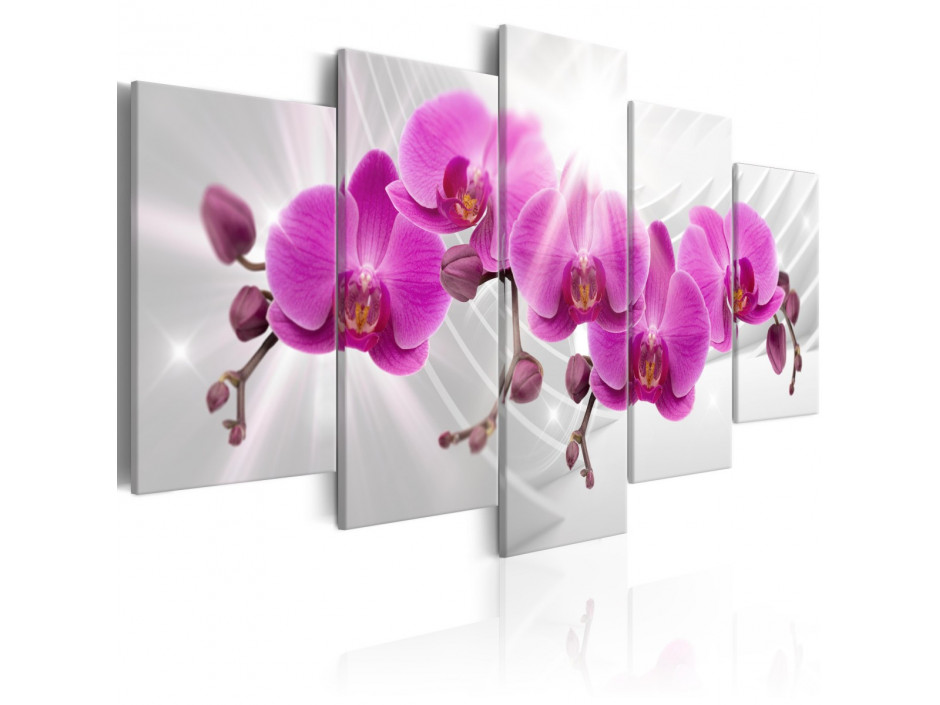 Tableau - Abstract Garden: Pink Orchids
