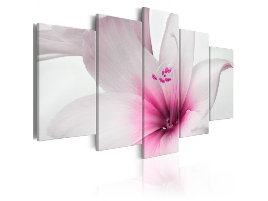 Tableau - Amarylis: Pink Charm