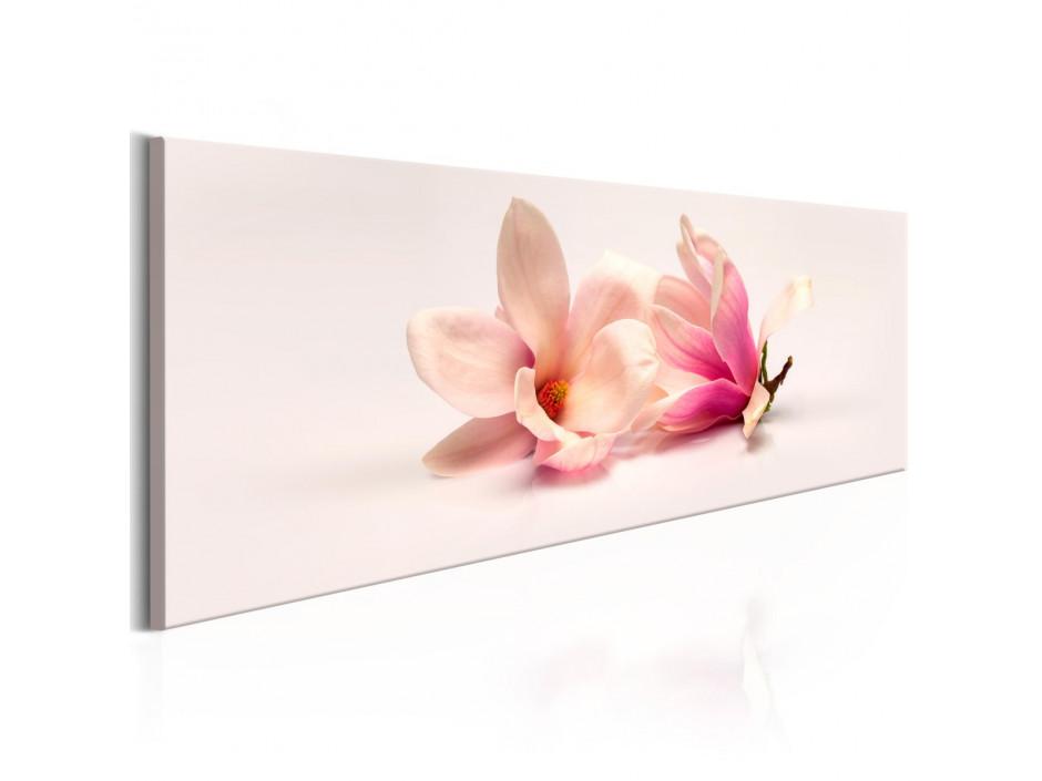 Tableau - Beautiful Magnolias