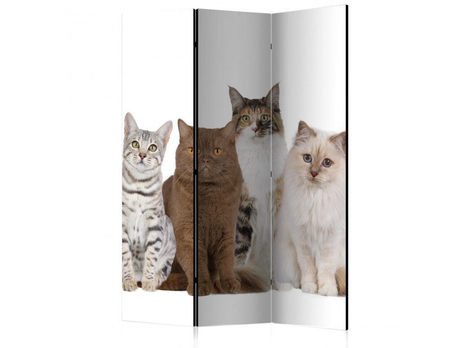 Paravent 3 volets Sweet Cats [Room Dividers]