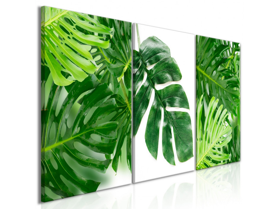 Tableau - Palm Leaves (3 Parts)