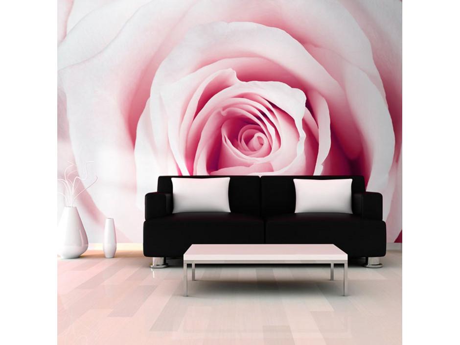 Papier peint - Rose maze