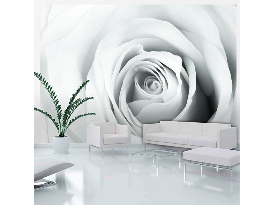 Papier peint - Rose charade