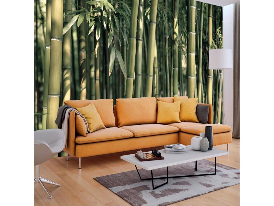 Papier peint  Bamboo Exotic