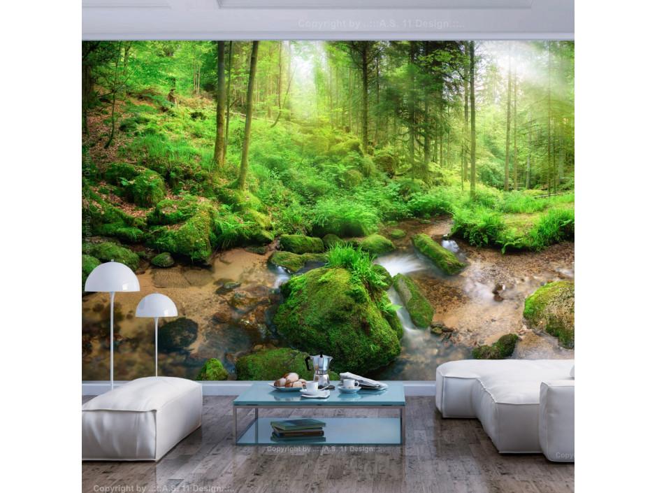 Papier peint Humid Forest