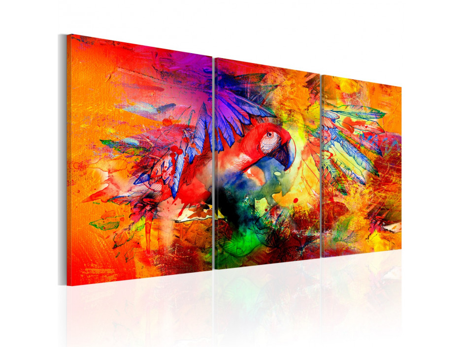 Tableau - Colourful Parrot