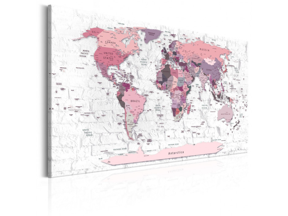Tableau  Pink Frontiers