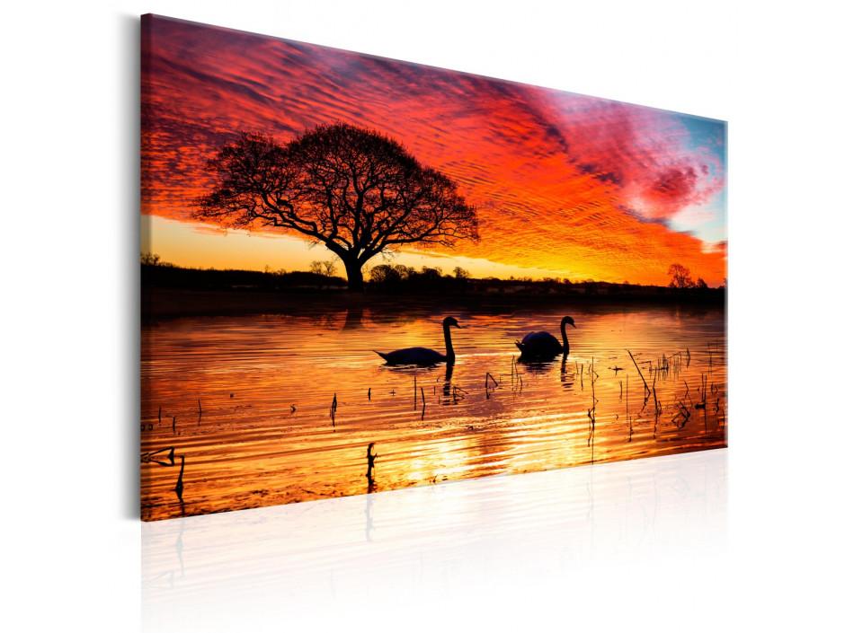 Tableau - Swan Lake