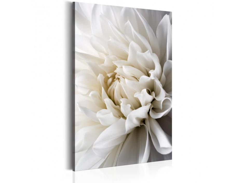 Tableau  White Dahlia