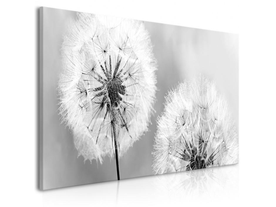 Tableau  Fluffy Dandelions (1 Part) Grey Wide