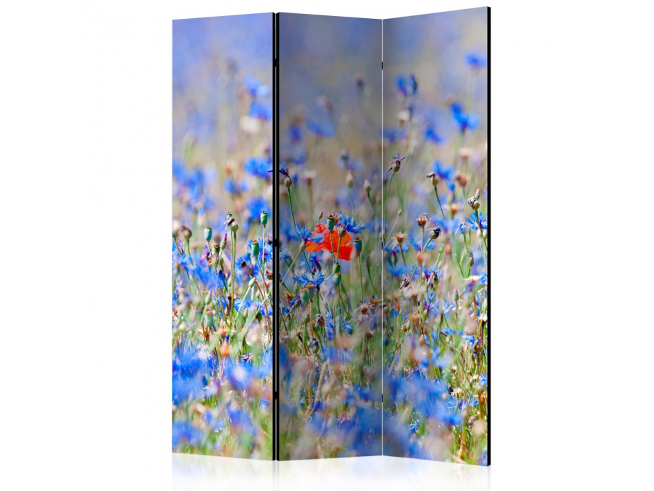 Paravent 3 volets  A skycolored meadow  cornflowers [Room Dividers]
