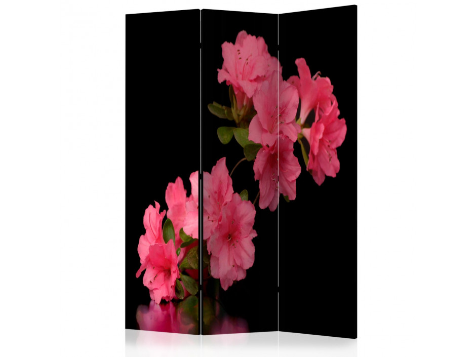 Paravent 3 volets  Azalea in Black [Room Dividers]
