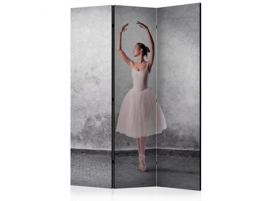 Paravent 3 volets  Ballerina in Degas paintings style [Room Dividers]