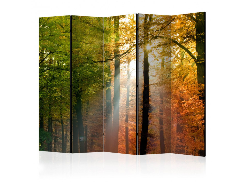 Paravent 5 volets  Forest Colours [Room Dividers]
