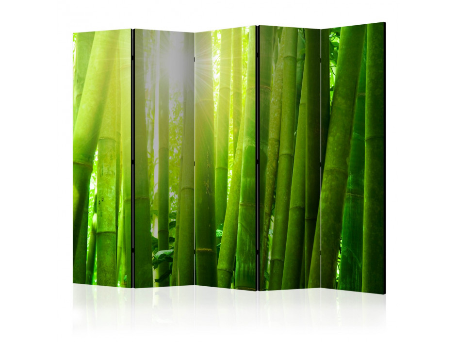 Paravent 5 volets  Sun and bamboo [Room Dividers]