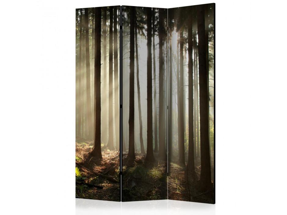 Paravent 3 volets  Coniferous forest [Room Dividers]