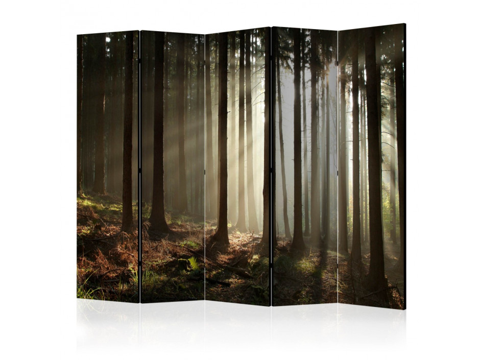 Paravent 5 volets  Coniferous forest [Room Dividers]