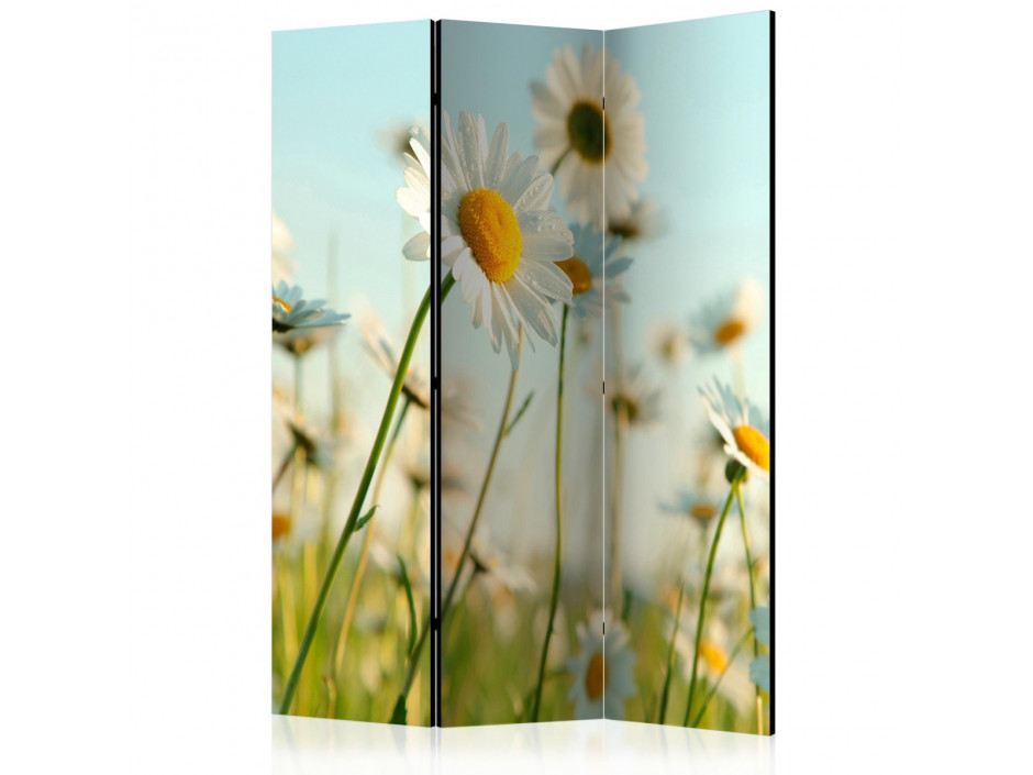 Paravent 3 volets  Daisies  spring meadow [Room Dividers]
