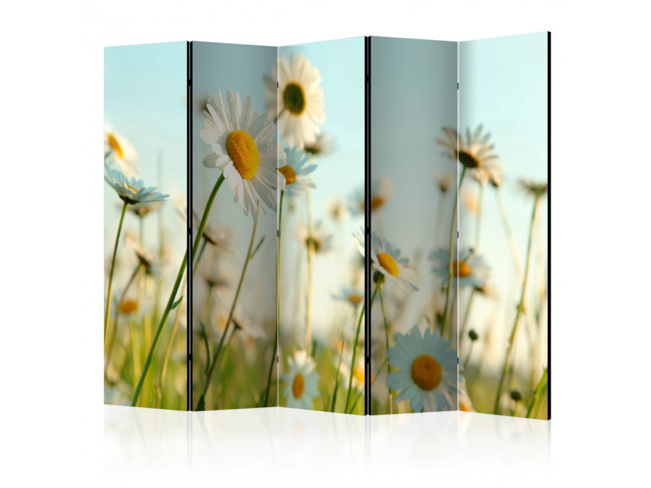 Paravent 5 volets  Daisies  spring meadow [Room Dividers]