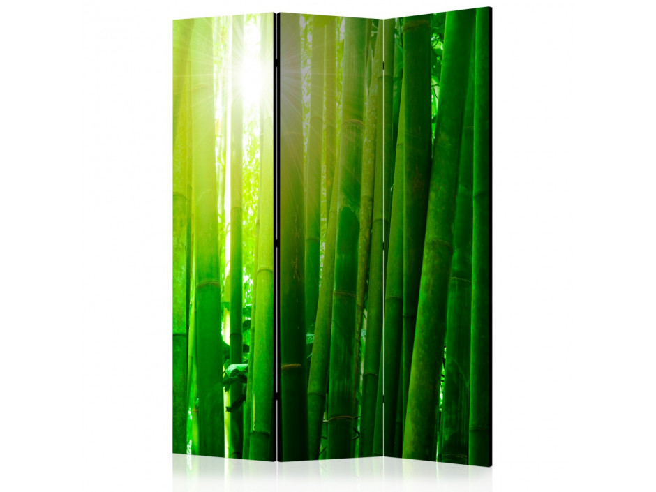 Paravent 3 volets  Sun and bamboo [Room Dividers]