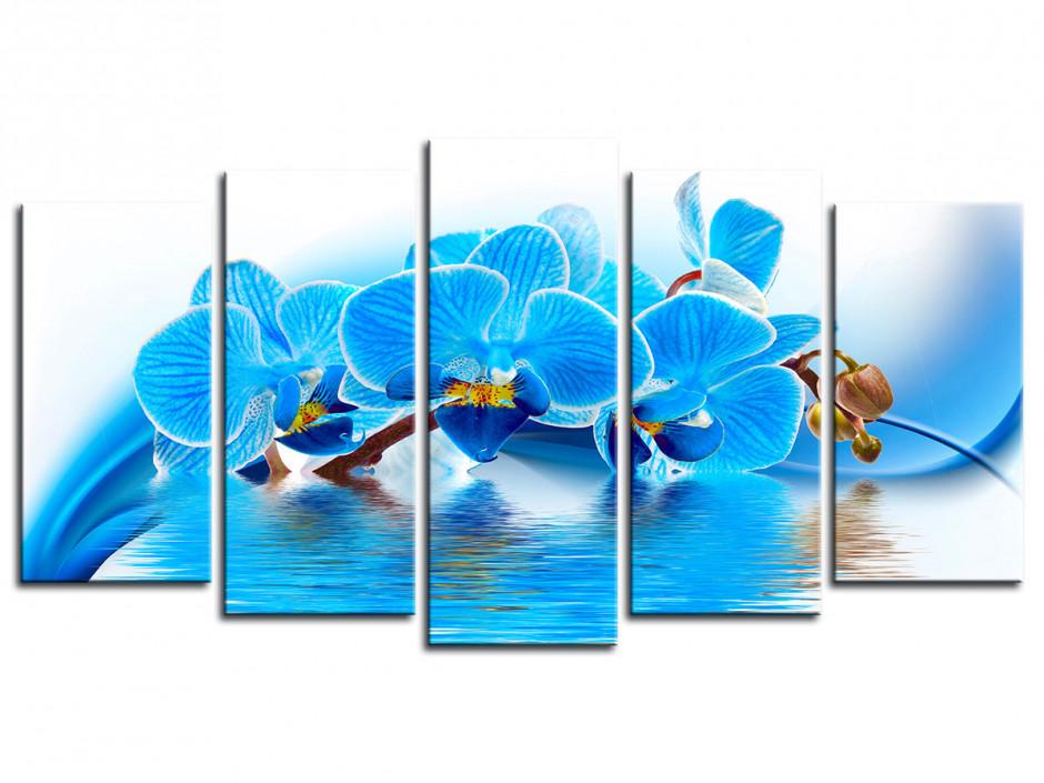 Tableau deco Fleurs Orchidée Bleu