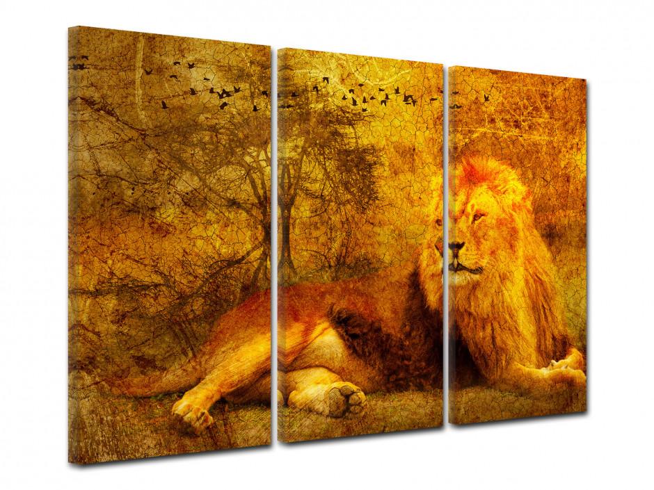 Tableau toile triptyque LION SAUVAGE