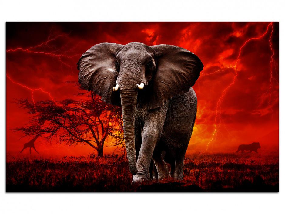 Tableau toile éléphant sauvage SOUS LE TONNERRE
