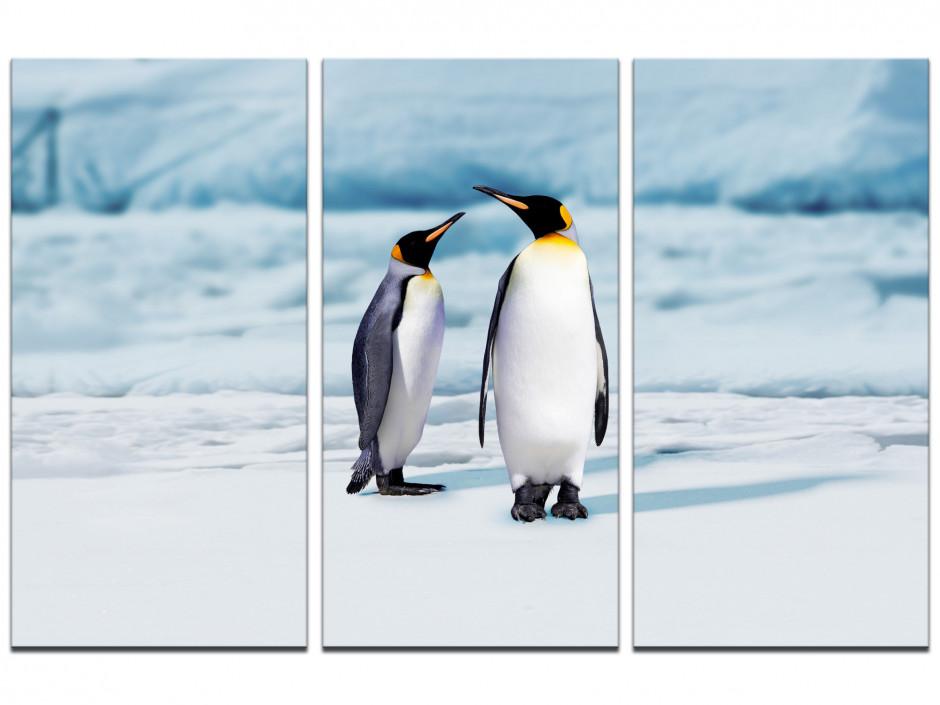 Tableau toile triptyque photo LES DEUX PINGOUINS